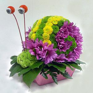 Улитка цветы и букеты с доставкой по Горловке