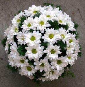 Музыка любви цветы и букеты с доставкой по Горловке