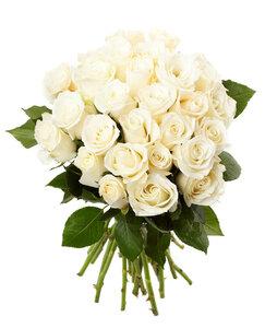 Ангел цветы и букеты с доставкой по Горловке