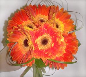 Огненный закат цветы и букеты с доставкой по Горловке