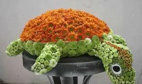 Черепаха цветы и букеты с доставкой по Горловке