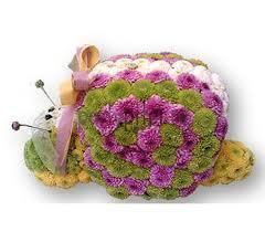 Улиточка цветы и букеты с доставкой по Горловке